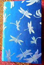 Better dragonfly journal