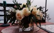 White rose line small