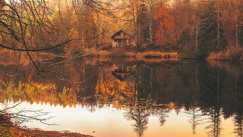 cottage near lake
