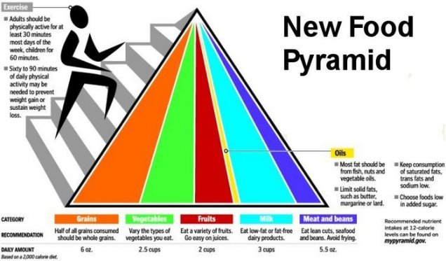 new food pyramid final