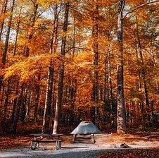 tent autumn