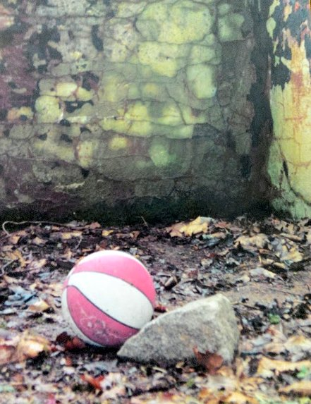 Empty ages old pool with ball and stone