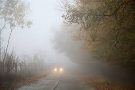 foggy on the road