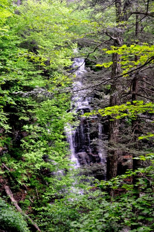 Ricketts Glen State Park in PA-001