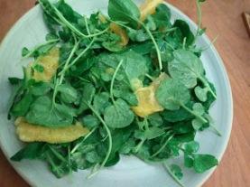 Watercress orange salad.jpg