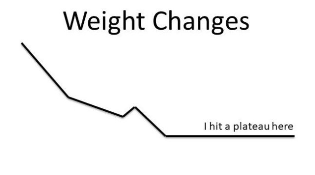 Weight Changes plateau