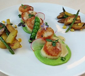 Seared scallops green pea puree